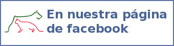 Asociación protectora de Animales de Segovia en Facebook